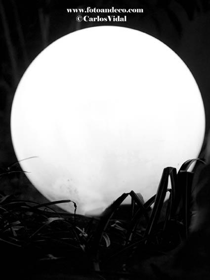 La luna en eljardín